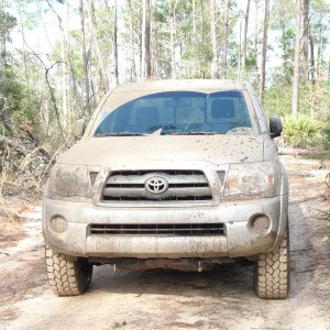 My Taco looking tough in Ocala!!!